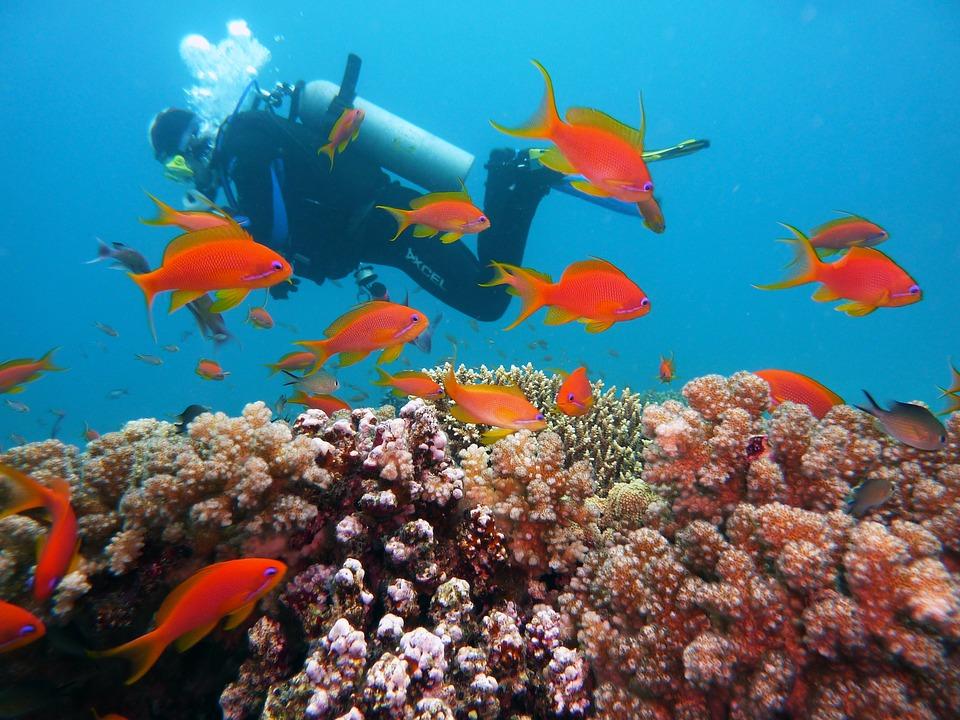 Sumba, Indonesië