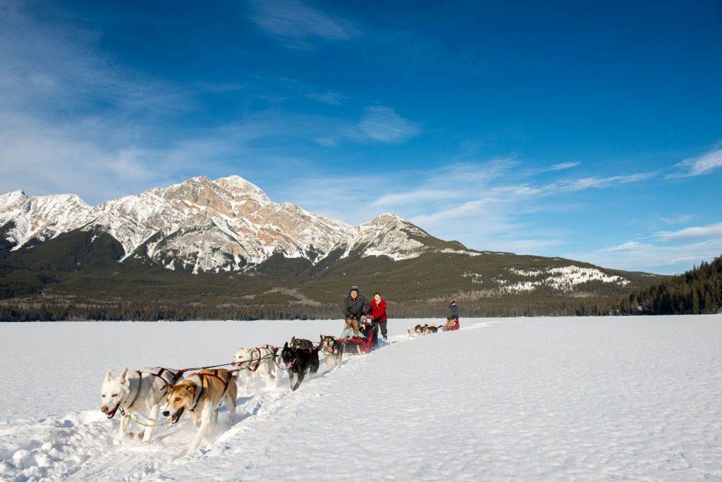 hondenslee in de bergen