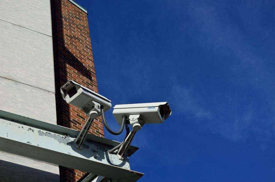 Neppe IP Cameras