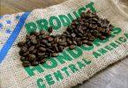 duurste koffie soorten
