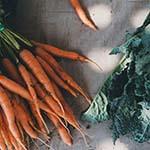 bio-wortelen