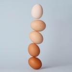 gestapelde-eieren
