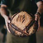 vers-brood