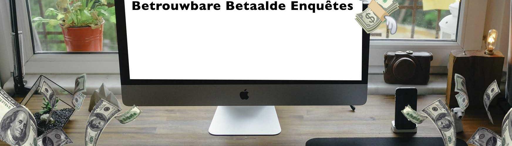 betrouwbare-online-enquetes