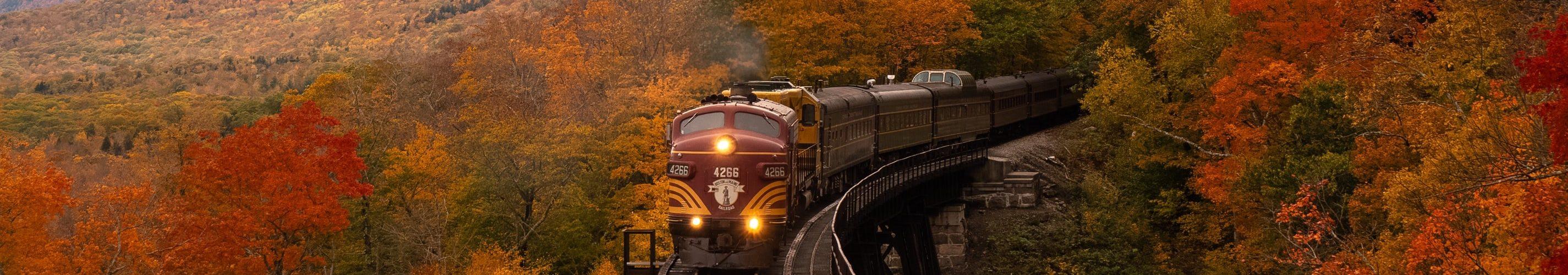 trein-bergen
