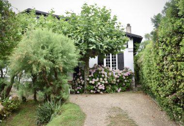 tuin-wit-tuinhuisje