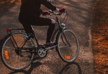 fietsen-bos