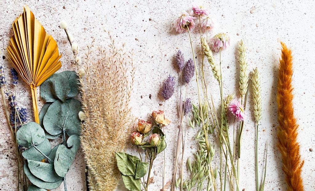 gedroogde-bloemen-takjes