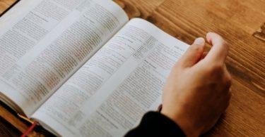 boek-hand-studie