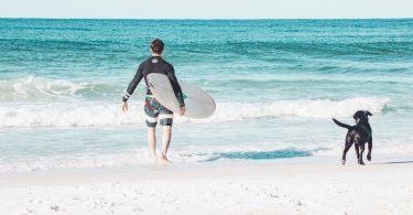 surfen-met-hond