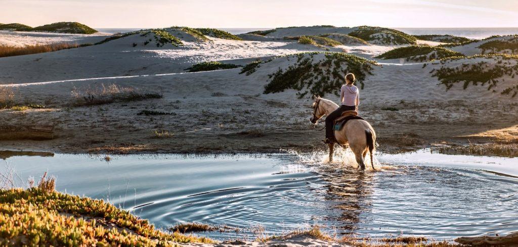 paardrijden-duinen